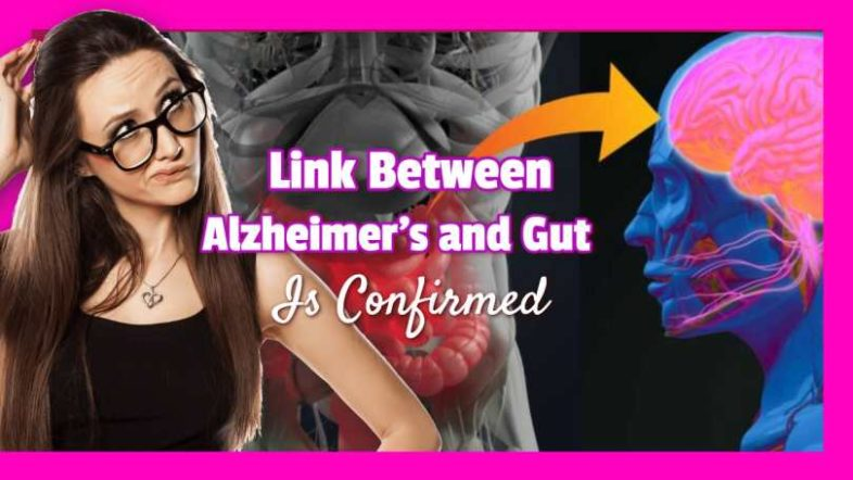 "Text stating: ""Link between Alzheimers and Gut""."