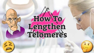 """Featured text: """"how to lengthen tolomeres""""."""